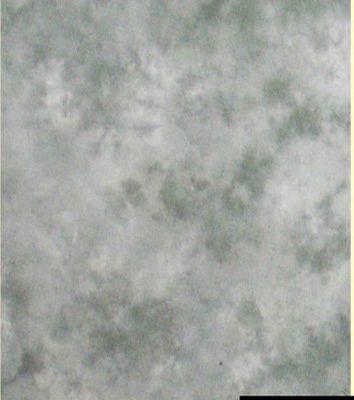 Falcon Eyes Achtergronddoek S101 2